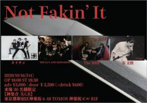 Not-Fakin-it